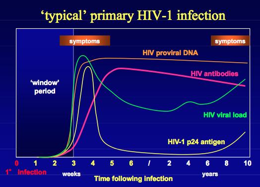 Hiv Natural History Graph